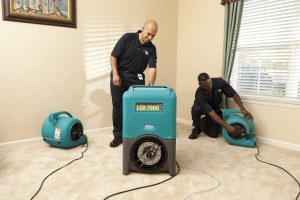 ServiceMaster Water Damage Services